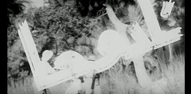 فيلم نادوجا
