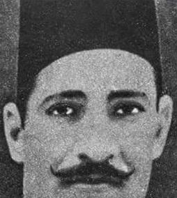 عناني أحمد عواد