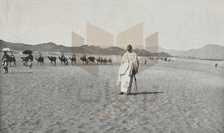 أمير المحمل المصري